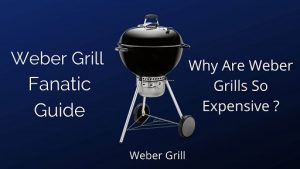 Why Are Weber Grills So Expensive